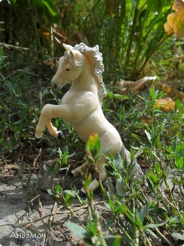 Вот три моих красавца жеребца на прогулке)) Коричневый: Исландский пони. Серый - Андалузкий жеребец) И белый: похож на Липизанскую лошадь. )) Не сказано было, так что утверждать не могу) фото 3