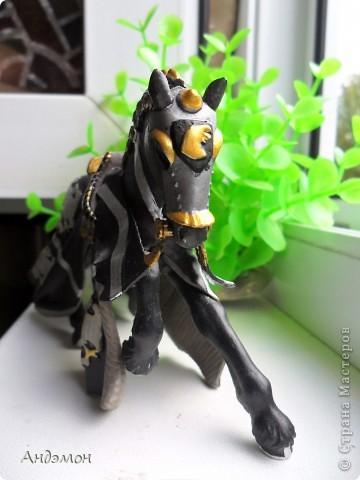 Вот три моих красавца жеребца на прогулке)) Коричневый: Исландский пони. Серый - Андалузкий жеребец) И белый: похож на Липизанскую лошадь. )) Не сказано было, так что утверждать не могу) фото 19