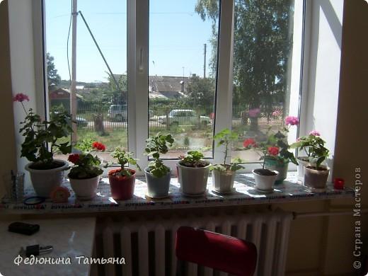 Школьные цветы фото 3