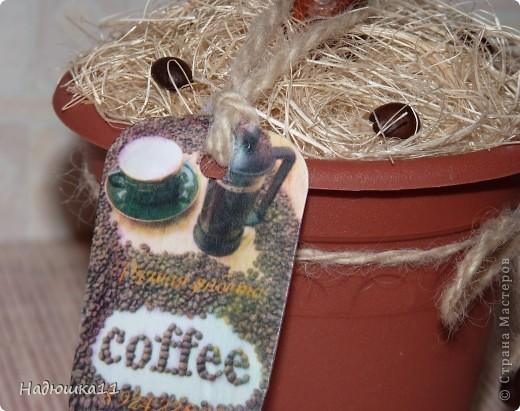Поступил мне заказ на кофейное дерево. Было предложено несколько вариантов, но клиент пожелала такое же как и у меня дома. Пришлось повторюшничать саму себя ))) фото 3