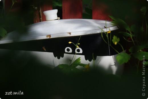 Этот унитаз с наклейкой из самоклеющийся пленки стоял дома. Потом его заменили отнесли на дачу и временно поставили в кустах. А он там прижился и помоему ему там очень хорошо! фото 1