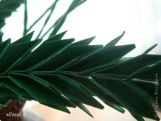 Космея оригами фото 9