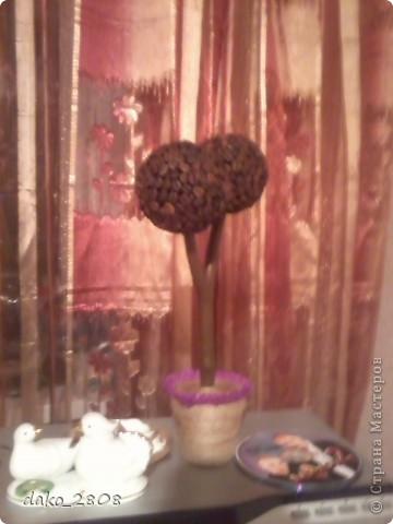 материал-кофейные зерна фото 3