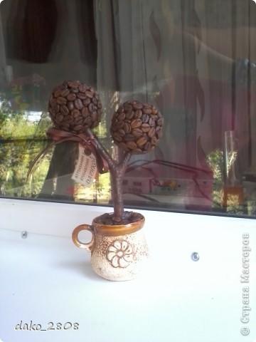 материал-кофейные зерна фото 5