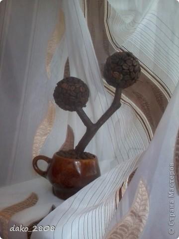материал-кофейные зерна фото 1