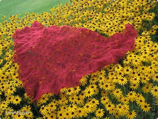Нежный и воздушный палантин из пряжи Nida (100 гр - 565 м) Ширина шарфа - 50 см, длина - чуть больше двух метров. Расход - 150 гр.  фото 4