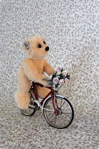 Тедди велосипедист по имени Байк фото 2