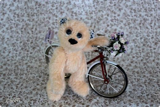 Тедди велосипедист по имени Байк фото 1