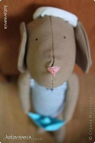 Мой пёсик-моряк:) фото 1
