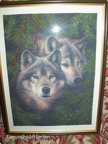 """картина """"Волки"""" фото 1"""
