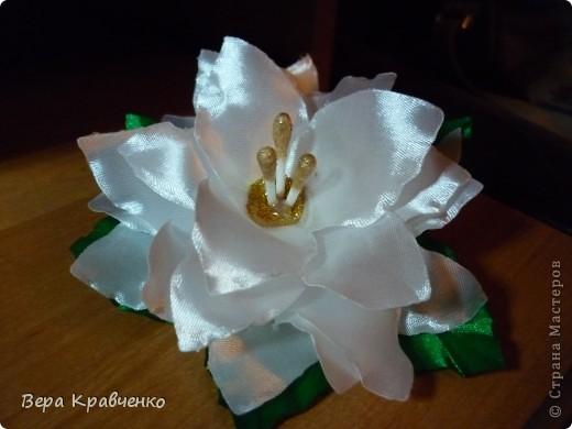 Приветик!!!!!! Срочно понадобился подарок для подруги сына. Решили подарить лилию))))))))) фото 3