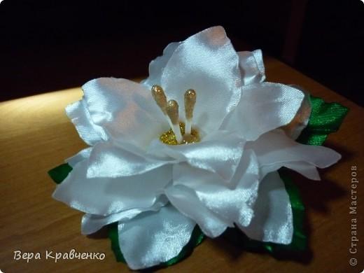 Приветик!!!!!! Срочно понадобился подарок для подруги сына. Решили подарить лилию))))))))) фото 1