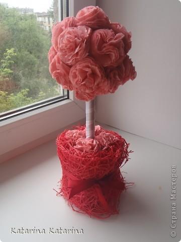 розовое дерево - 2 фото 1