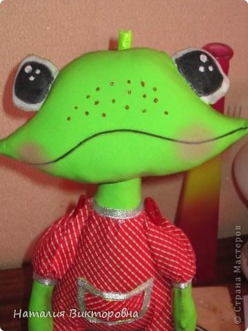 Лягушка-повторюшка фото 2