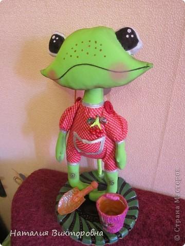 Лягушка-повторюшка фото 4