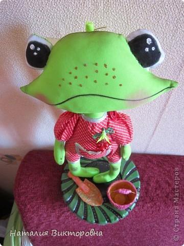 Лягушка-повторюшка фото 5
