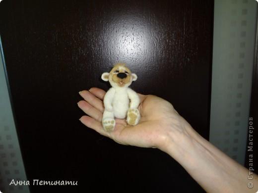 Моя ученица- Лена(сегодня она впервые познакомилась с валянием)Начало работы над мишкой.. фото 2