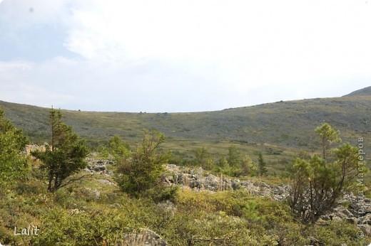 Гора Конжаковский камень (1569 м), север Среднего Урала, находится близ Краснотурьинска. Природа там - не описать словами! Воздух чистейший, виды умопомрачительные! Вот он - седой Урал! Древние ели, поросшие лишайником, вековые кедры, горные реки, поля ягодников на плато...  На Конжаке ежегодно проводится международный марафон 42 км - на вершину горы и обратно по размеченной флажками трассе. Во время марафона спортсмены и просто туристы совершают восхождение на гору за один день, задачу облегчает то, что организаторы обеспечивают питание и питье на всем протяжении трассы. Но обычно на гору ходят с двумя ночевками - на половине подъема ставят палатки и второй день посвящают подъему на вершину.  Итак, начнем. Для начала переправа через горную речку. Сейчас, в августе, она не такая полноводная, много бродов. Река Катышер, приток Лобвы.  Есть и другая дорога, трасса начинается с другой стороны, там приходится переходить через Конжаковку. фото 11