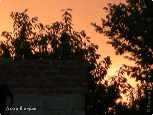 Вот такие закаты бывают в моём городе в ясную погоду... фото 6