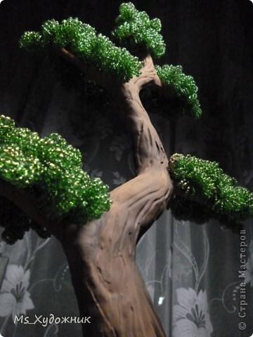 """""""Бонсай - дух Японии у тебя дома"""" фото 8"""