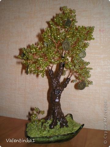 Цветущая сакура.  фото 7