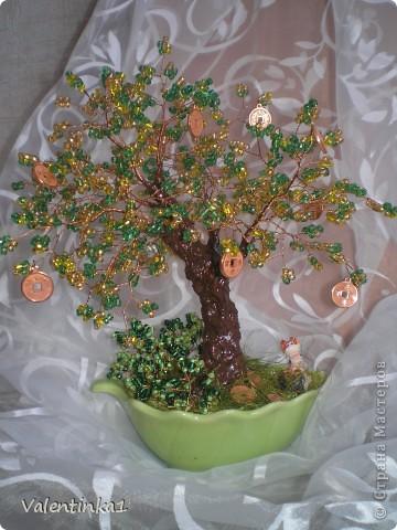 Одно из моих увлечений деревья из бисера.  Последнии творения мои.  Денежное деревце.  Сакура.