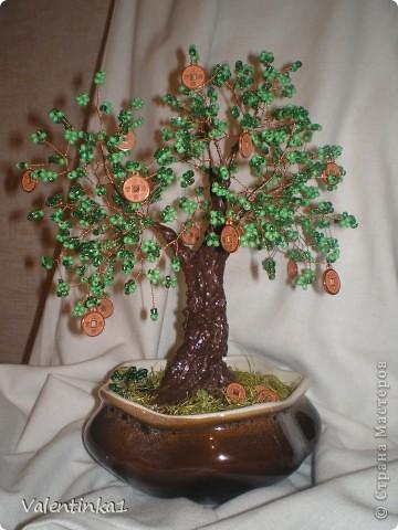Цветущая сакура.  фото 3