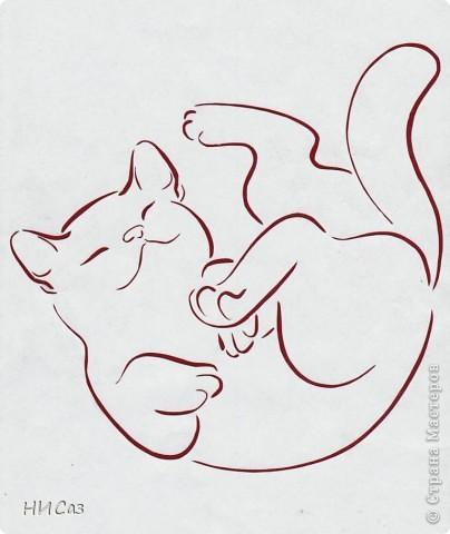 Котята фото 3