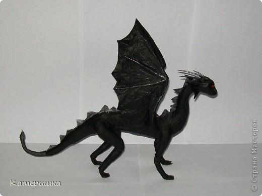 Чёрный дракон фото 1
