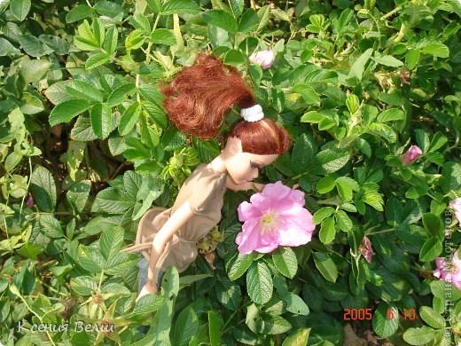 Здравствуйте! Насчет мебели у меня ничего нового нет, поэтому делаю фоторепортажи. Сегодня познакомлю вас с моей любимой (после Челси, конечно) куклой. Ее звать Калиста, везде сфотографирована в покупной одежде, пока на нее не нашила, но это не надолго))) фото 12