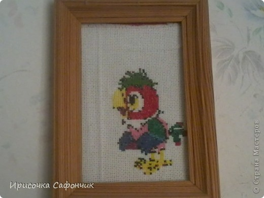 кешу я начала вышивать потом забросила потому что ниток не хватило ну а потом уж решила доделать и вот он мой попугайчик!!