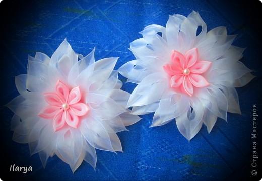 Понравились мне цветочки такого вида.... фото 1