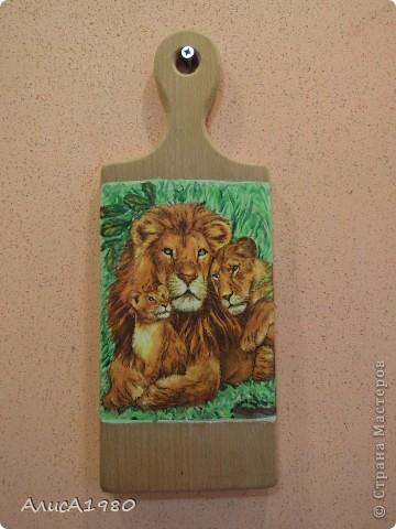 семейка львов и всяко- разно