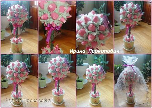 Спасибо Натуле,Л за вдохновление http://stranamasterov.ru/user/7691 и мастерице marina_flora http://stranamasterov.ru/user/22935 Первые  мои розовые деревья, фото 1