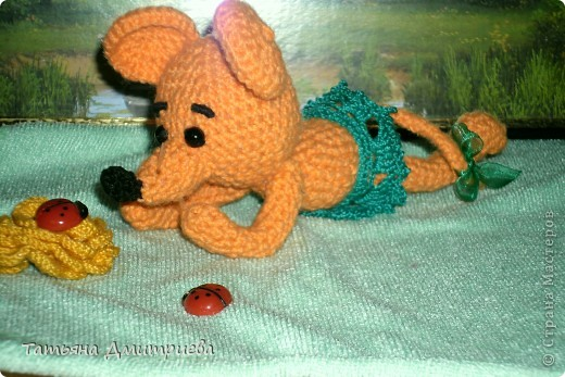 мышка на отдыхе фото 2