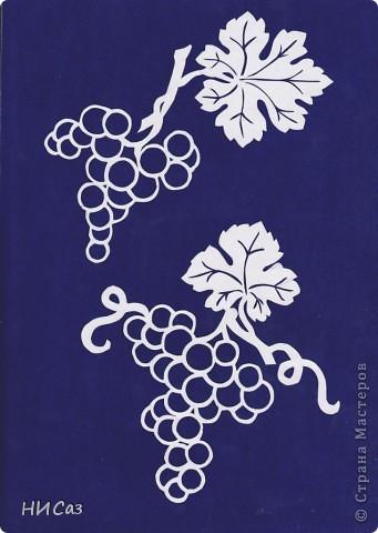 Виноград фото 2
