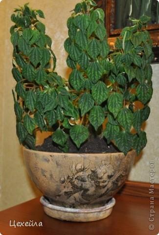 Дом для цветка в античном стиле:) фото 1