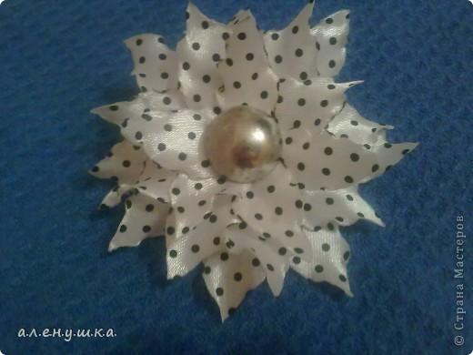моя лилия. фото 2