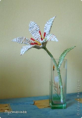 Я цветов наплела...  Скоро очередной экофестиваль, и там я буду показывать, что можно сделать из старых газет. фото 2