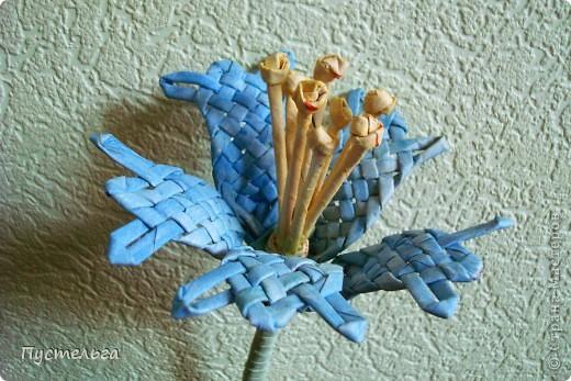 Я цветов наплела...  Скоро очередной экофестиваль, и там я буду показывать, что можно сделать из старых газет. фото 5