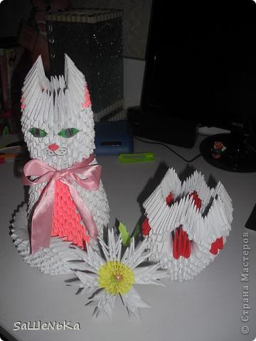 Кот,ромашка и ваза. фото 1