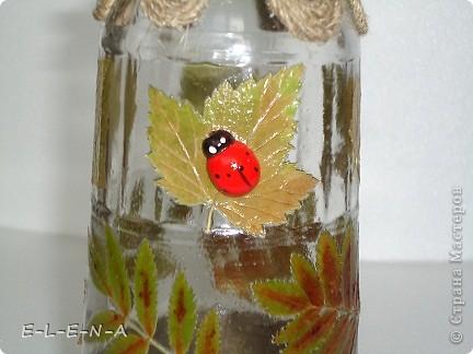 Бутылочка-графин. Первая моя работа со шпагатом. Использованы листочки смородины и рябины. фото 4