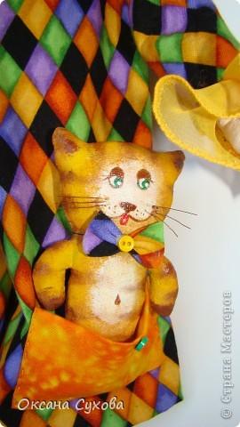 Клоунесса, дрессирующая кота фото 4