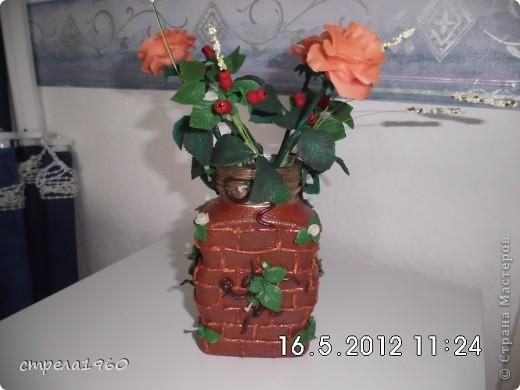 мои первые розы из хф.собралась дома пустая тара и вот что получилось фото 3