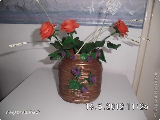 мои первые розы из хф.собралась дома пустая тара и вот что получилось фото 1