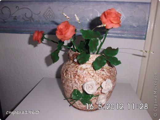 мои первые розы из хф.собралась дома пустая тара и вот что получилось фото 4