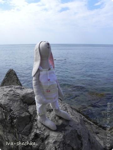 Зайчик-путешественник фото 2
