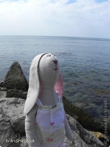 Зайчик-путешественник фото 3
