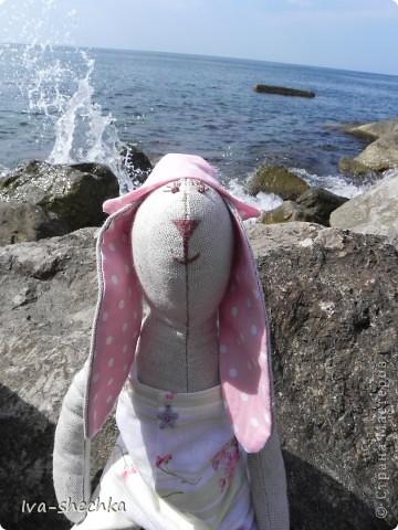 Зайчик-путешественник фото 1