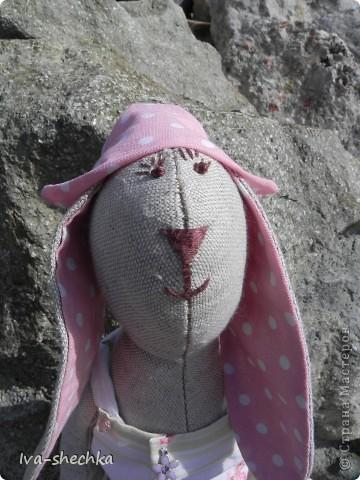 Зайчик-путешественник фото 5